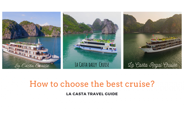How to choose the best cruise?